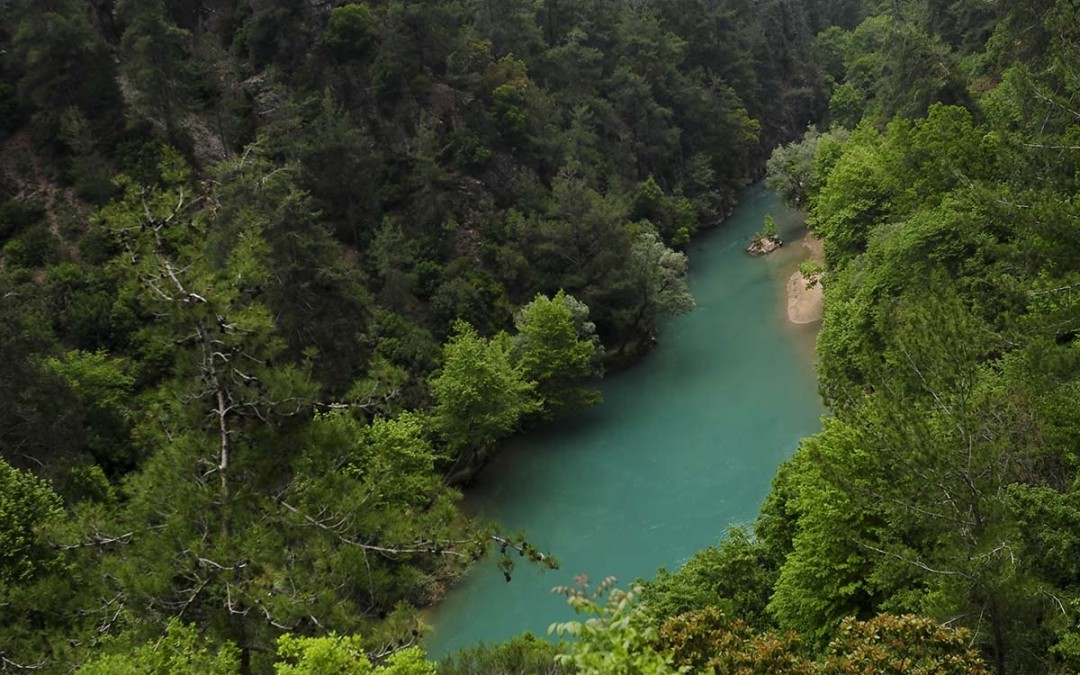 نهر-شوّان